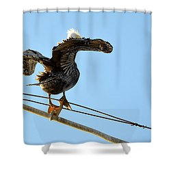 Shower Curtain featuring the photograph Bird On The Wire by AJ Schibig