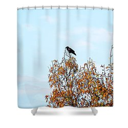 Bird On Tree Shower Curtain by Craig Walters