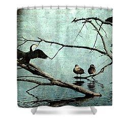 Bird Perch Shower Curtain
