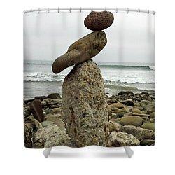 Bird Rock Art Shower Curtain