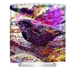 Shower Curtain featuring the digital art Bird The Sparrow Nature Pen  by PixBreak Art