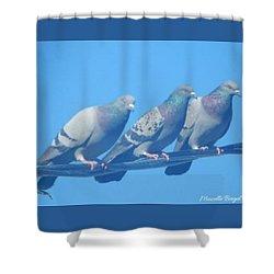 Bird Trio Shower Curtain