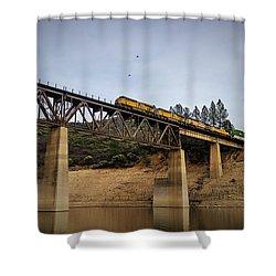 Bird Vs Train Shower Curtain