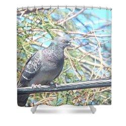 Bird Watchman Shower Curtain