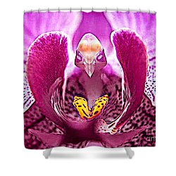 Bird With Butterfly - Floral Oddity Shower Curtain by Merton Allen