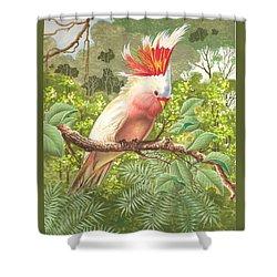 Cakatoo Shower Curtain