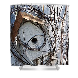 Birdhouse Brambles Shower Curtain by Lauri Novak