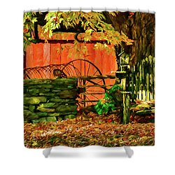 Shower Curtain featuring the photograph Birdhouse Chair In Autumn by Jeff Folger