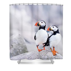 Birdland Shower Curtain by Evelina Kremsdorf