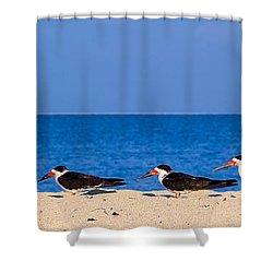 Birdline Shower Curtain