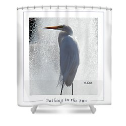Birds And Fun At Butler Park Austin - Birds 2 Macro Poster Shower Curtain