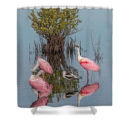 Birds And Mangrove Bush Shower Curtain