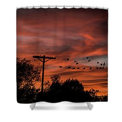 Birds And Sunset Shower Curtain