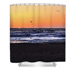 Birds At Sunrise Shower Curtain