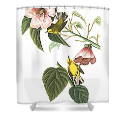 Shower Curtain featuring the photograph Birds Chat by Munir Alawi