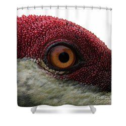 Birds Eye Shower Curtain