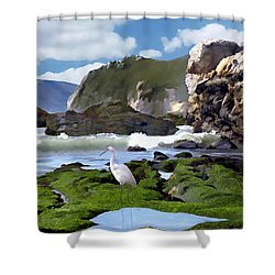 Bird's Eye View Shower Curtain by Kurt Van Wagner