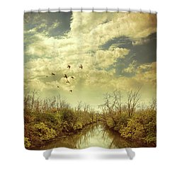Shower Curtain featuring the photograph Birds Flying Over A River by Jill Battaglia