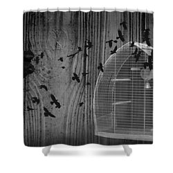 Birds Gone Wild In Black And White Shower Curtain