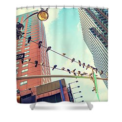 Birds In New York City Shower Curtain