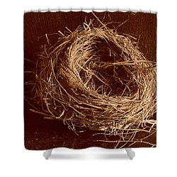 Bird's Nest Sepia Shower Curtain