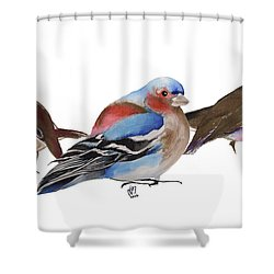 Birds Of A Feather Shower Curtain by Nancy Moniz