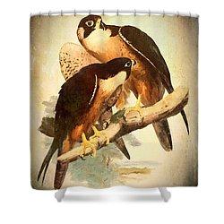 Birds Of Prey 2 Shower Curtain