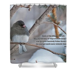 Birds Of The Air Shower Curtain