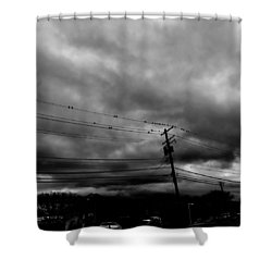 Birds On A Wire 2018 Shower Curtain