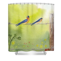 Birds On A Wire Barn Swallows Shower Curtain