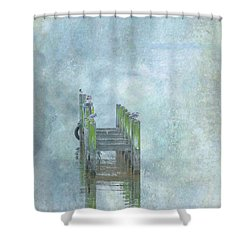 Shower Curtain featuring the digital art Birds On Abandoned Dock by Randy Steele