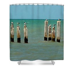 Birds On Sticks Shower Curtain