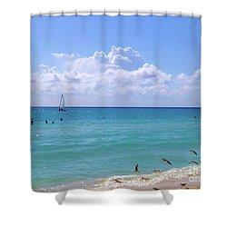 Shower Curtain featuring the photograph Birds On The Beach M4 by Francesca Mackenney