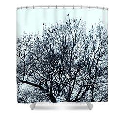 Birds On The Tree Monochrome Shower Curtain