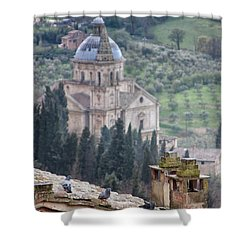 Birds Overlooking The Countryside Shower Curtain