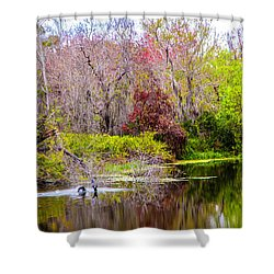Shower Curtain featuring the photograph Birds Playing In The Pond 3 by Madeline Ellis