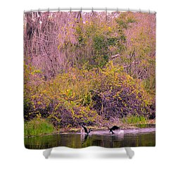 Shower Curtain featuring the photograph Birds Playing In The Pond 2 by Madeline Ellis