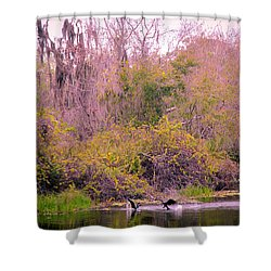 Shower Curtain featuring the photograph Birds Playing In The Pond 1 by Madeline Ellis