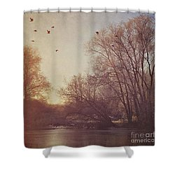 Shower Curtain featuring the photograph Birds Take Flight Over Lake On A Winters Morning by Lyn Randle