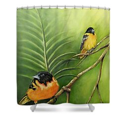 On The Lookout, Birds  Shower Curtain