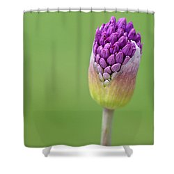 Shower Curtain featuring the photograph Birthing Springtime by Linda Mishler