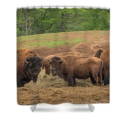Shower Curtain featuring the photograph Bison 2 by Joye Ardyn Durham