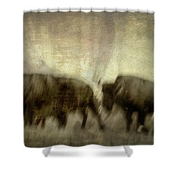 Shower Curtain featuring the photograph Bison 3 by Joye Ardyn Durham