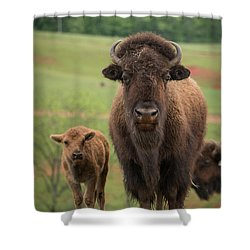 Shower Curtain featuring the photograph Bison 4 by Joye Ardyn Durham