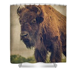 Shower Curtain featuring the photograph Bison 8 by Joye Ardyn Durham