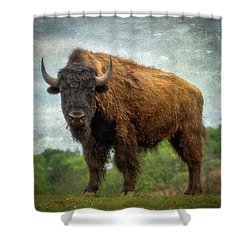 Shower Curtain featuring the photograph Bison 9 by Joye Ardyn Durham
