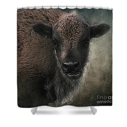 Shower Curtain featuring the photograph Bison Calf Staredown by Clare VanderVeen
