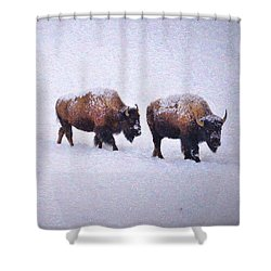 Bison March Impressions Shower Curtain