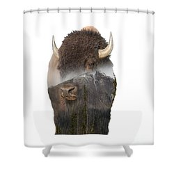 Bison Mountain  Shower Curtain
