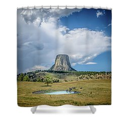 Bison Pond Shower Curtain by Mark Dunton